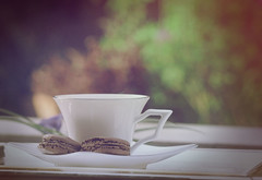 (Aih.) Tags: morning blur green cup sunshine garden tea bokeh front explore page macaron explorefrontpage