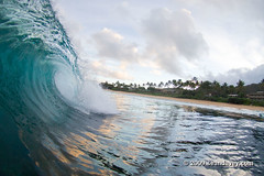 A tubing wave, against the sunrise, on the north shore. (Sean Davey Photography) Tags: pictures blue usa green nature glitter contrast gold hawaii golden amazing shiny energy colorful warm power natural bright oahu shoreline clarity wave clean clear alternativeenergy shore northshore dreamy curl seethrough aquatic transparent lucid shimmer crystalclear renewableenergy goldenlight greenenergy greenpower translucence lucidity oceanwaves amazingnature seawave alternativepower waterocean oceanswell seawaves awesomenature h30 northshoreoahu surferswave endlessenergy oceanpower renewablepower seaswell majesticnature incrediblenature greenandclean wavesofthesea curlingwave wavesenergy seawaveenergy oceanwavepower oceanenergy oceanwaveenergy seapowermarine oceanwavepictures energyfromtheocean oceanenergyresources wavesoftheoceanwave endlesspower