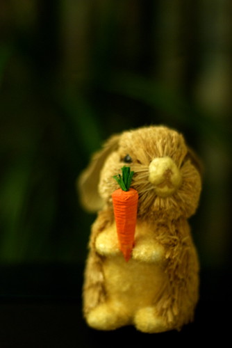 Happy Carrot Day!