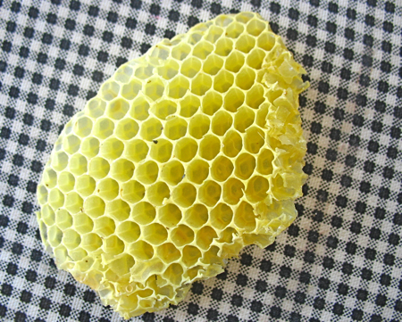 Honeycomb (straight from the hive)