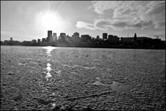 MTL (• CHRISTIAN •) Tags: city winter sky urban blackandwhite bw sun snow ice skyline river soleil blackwhite cityscape skyscrapers montréal noiretblanc mtl hiver nb ciel stlawrence neige stlaurent ville contrejour glace fleuve noirblanc urbain gratteciels 1on1bwphotooftheweek 1on1bwphotooftheweekfebruary2009