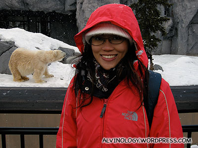 At the polar bear enclosure