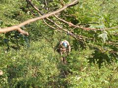 P8010435 (alexyenni) Tags: camping bearmountain july09