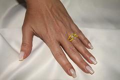 IMG_1161 (erikadefreitas) Tags: anillos