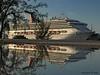 Buy one get one free deal on Cruises (iCamPix.Net) Tags: carnival vacation canon miami familyfun atlanticocean professionalphotographer miamidade 8573 carnivaltriumph cruseship portofmiami lndscape markiii1ds cruiseshipreflection