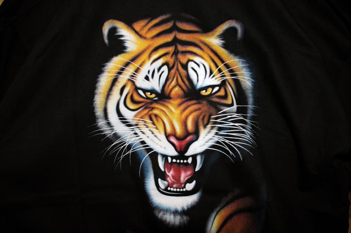 tiger_0207 web