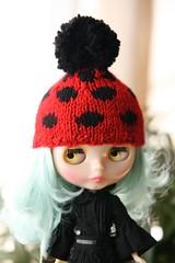 Ladybug Mavi