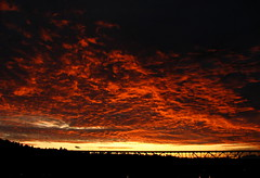 Clouds on fire (GustavoG) Tags: seattle bridge sky orange cloud clouds fire evening dusk aurora