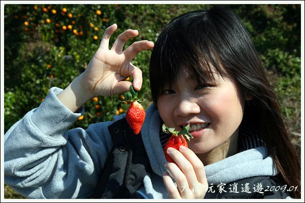 090117_09_採草莓