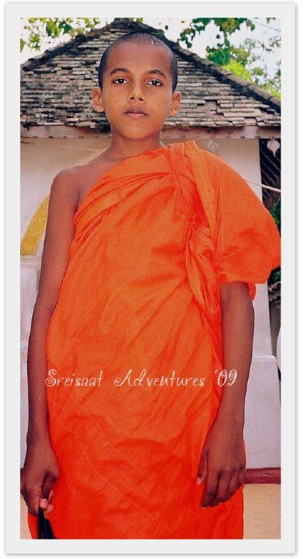 orange young SL monk