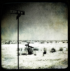 The Salton Sea (Adriene Hughes) Tags: blakandwhite desert squareformat toned saltonsea ttv