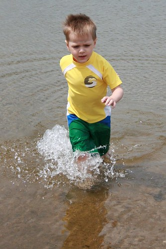 In the Lake II