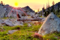 Milne Lake Sunset (Wilderness Perspectives) Tags: sunset sun mountains northerncalifornia forest rocks northwest wildflowers norcal hdr sunray marblemountains photomatix nikkor1755f28 klamathnationalforest nikond300 milnelake capturenx2 wildernessperspectives