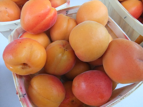 Apricots from Wayward Seed Farm