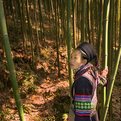 I can see the spirits now (NaPix -- (Time out)) Tags: portrait woman black canon square landscape asia spirit bamboo vietnam spirits explore soul emotions sapa hmong 500x500 explored napix icanseethespiritsnow hangdavillage