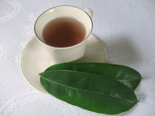 Soursop Leaf Tea
