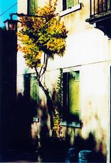 Burano # 7 (Andrea Vismara (more off than on)) Tags: house crossprocess venezia act burano analogic pentaxmx analogicreflex pentaxiani lachesilab