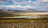 aridité (Nord ouest argentin, avril 2009)