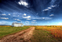 golden soybeans (Mandana (on and off)) Tags: road trees clouds canon landscape golden flat superb farm horizon country sunday harvest peaceful wideangle bluesky september heartland fields soybean 2009 hdr countryroad storageshed farmfields scatteredclouds mywinners wisconsinmidwest saariysqualitypictures