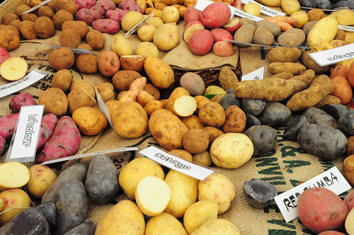 Different types of Potatoes