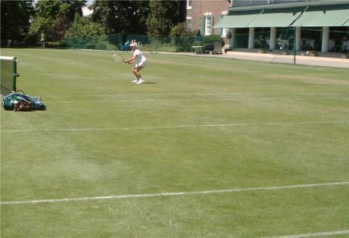 Irene Grass 2003