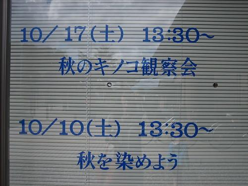 kinoko20091010 001