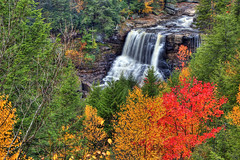 Blackwater Falls (Tom Steele Photography) Tags: autumn fall waterfall fallcolors westvirginia hdr blackwaterfalls absolutelystunningscapes