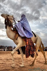 King of the desert Touareg ! ( [ Libya Photographer ]) Tags: old city de an camel di libya altstadt camello deve ville vieille citt camelo  ghadames vecchia chameau libia libye   libi libyen     lbia libi  colorphotoaward   libija geogr    nc      lbija  liiba     lba