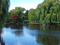 Boston Common (Dead End Girl) Tags: trees red green water girl boston dead end common bostoncommon deadendgirl louiseholtmorris