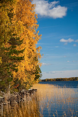 September Afternoon |   (Anatoly Kraynikov) Tags: autumn sky lake yellow forest reflections finland september silence kartpostal kartulla