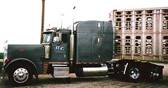1997 Peterbilt 379 (ccfabulous) Tags: truck 1997 peterbilt 379 bullrack