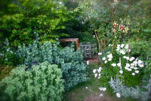 Garden in July: big and blowsy