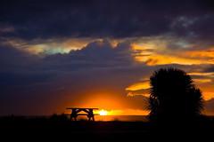 """Perfect Picnic"" (fantommst) Tags: sunset newzealand game nature colors beautiful silhouette table picnic nz hero winner southisland westcoast hokitika x2 gamewinner flickrchallengewinner thechallengefactory ""flickraward"" ""flickraward5"" trueblueaussieandkiwichallengegroup"