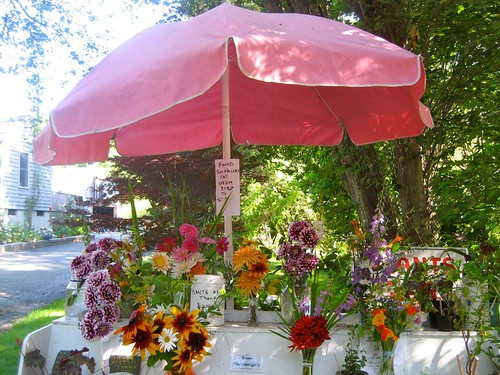Roadside Flower Stand