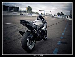 Dijon prenois 2/08/2009 (Antonin Douard) Tags: bike sport bar team dijon m1 joe course motorbike r 600 moto yamaha k2 slider 650 r1 suzuki motogp k8 circuit rossi 1000 gsx k6 250 gp motorsport k9 stoner yzr k4 k5 desmo gsxr 125 k1 k3 yzf r6 750 vermeulen genou k7 pedrosa capirossi prenois r125 vibreur gsxr1000fr