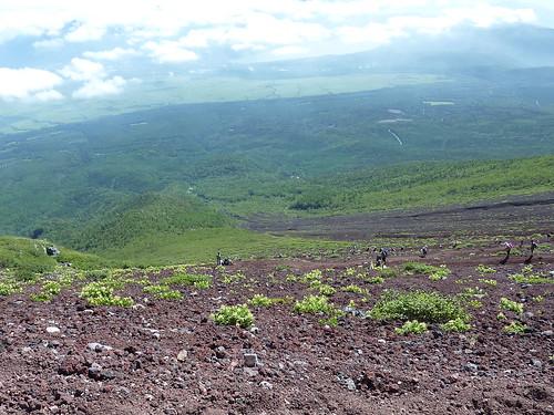 Bajada Fuji 1