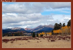 Fall In Rocky Mountain Park (pam's pics-) Tags: autumn sky storm color fall clouds colorado aspens rockymountains estespark nationalparks rockymountainpark pammorris nikond40 denverpam luxtop100