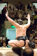 日馬富士 画像55