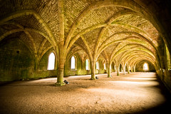 Cellarium, Fountains Abbey, Yorkshire, UK (jogorman) Tags: heritage water abbey garden site nikon yorkshire north royal sigma monk unesco monastery national list monks trust moors fountains 1020mm cistercian 1020 cellar listed foodstore yorks ripon studley d3x cellarium aldfield