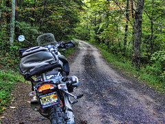 BMW R 1200 GS on a Back-Road in NC (NjCarGuy) Tags: nc tennessee north bmw carolina 1200 backroad gs gravelroad parsonsbranch