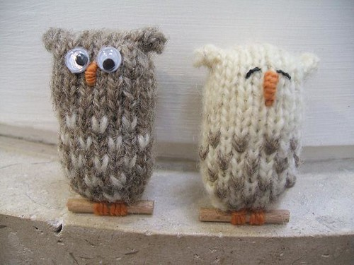 little brown owls