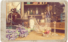 The Chemist (isayx3) Tags: usa flower texture window shop vintage store nikon mainstreet bottles display sigma disney retro pharmacy f28 muted beakers chemist d300 14mm plainjoe isayx3