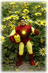 "IRON MAN: A WALK IN THE STARK - ""TAKE ME TO YOUR WEEDER"" (zero g) Tags: red plants flower yellow catchycolors actionfigure weed helmet ironman plastic armor superhero robjan marvel armour marvelcomics collectibles avengers tonystark robertjan avenger fantasticplastic fourcolorworld plasticfigures thetoyshoppe scificatchall actionfigured lifeinplastic macrotoys toystoystoys islandoflosttoys toysaholicanonymous forthetotallyobsessiveflickrites toyzruz ihearttoys peopleormannequinsdollsandmore capeweed plastic52 ironmanhulkandnightcrawler freakgeek actionfiguresmacro ultimatemarvelfans scifiordie marvelanddctoycollectors atoysperspective玩具の展望 comicbookstoys ironman50thanniversary ironman50thbirthday"