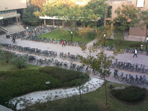 Bicycles at Zhejiang University in Hangzhou, China