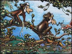 Pimchanzs ( CHRISTIAN ) Tags: streetart art wall graffiti montral jungle monkeys mur chimps primates singes arturbain mtlguessed gwim