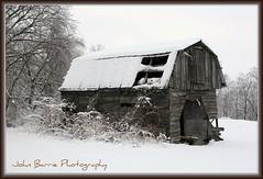 Old Wood Barn (John Barrie Photography) Tags: snow ice barn snowstorm picnik winterblast masonohio barninsnow oldwoodbarn masonoh frozenplants johnbarrie johnbarriephotography cincinnatisnowstorm09 2009icestorm velocityphotography cincinnatiicestorm