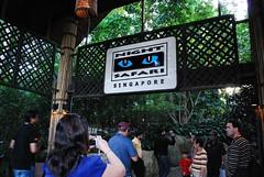 Singapore (Sonja Jean) Tags: singapore singaporezoo nightsafari