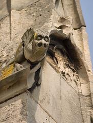 Gargouille (Christophe Hamieau) Tags: church montmorency glise gargouille valdoise gurgles collgialestmartin
