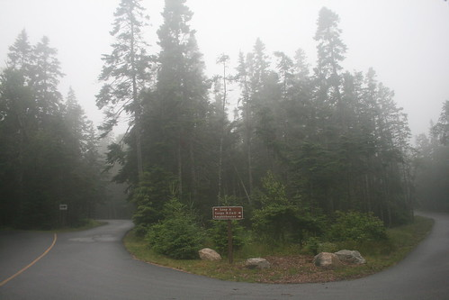 Foggy campground in Acadia