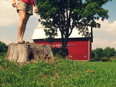 down on the farm bench monday (mlephotos) Tags: tree me grass barn hands rocks legs farm sp stump shorts treestump selfie hbm wilsonfarm vestaburg benchmonday
